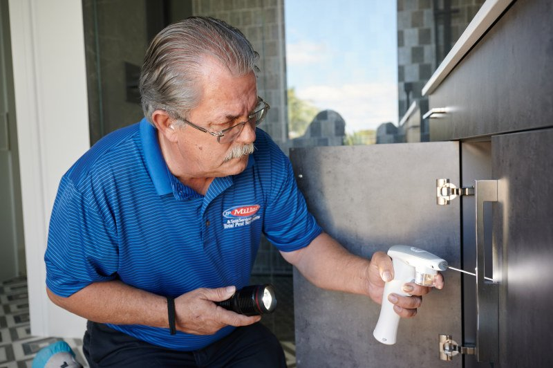 We are the leading bed bug exterminator in Deerfield Beach