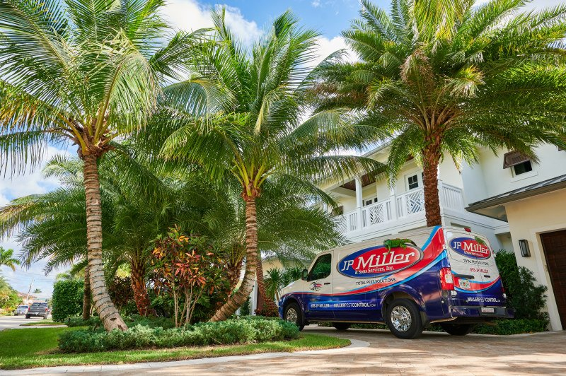 Nobody likes to see ants marching into their Wilton Manors